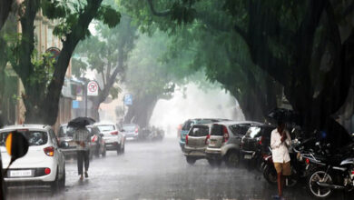 Photo of North Goa and South Goa likely to receive rainfall today: IMD