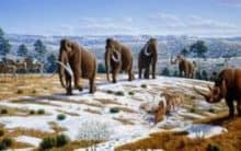 New evidence into what triggered extinction of Ice Age animals