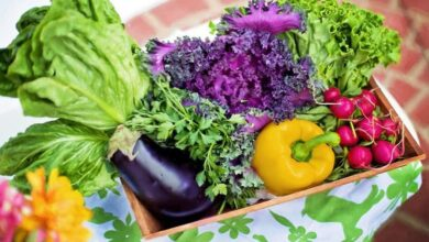 Photo of Plants that might pose adverse effects on health: study