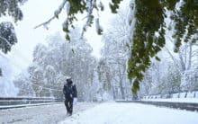 Untimely snow leaves Kashmir powerless