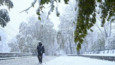 Photo of Untimely snow leaves Kashmir powerless