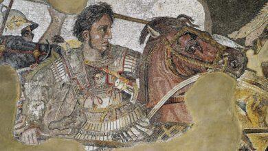 Photo of 3000 YO city, remains of Alexander the Great found in Pakistan