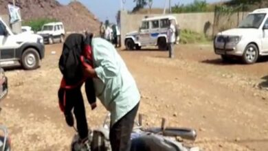 Photo of Honey bees attack Irrigation Minister in Kurnool