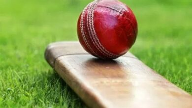 12-year-old dead as flying 'cricket' bat hits head