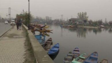 Photo of Dal Lake: Construction of western foreshore road  to start soon