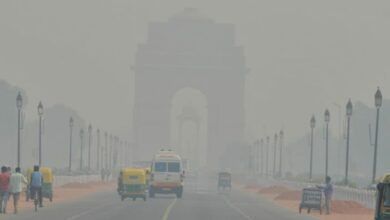 Photo of 30% rise in skin problems due to pollution