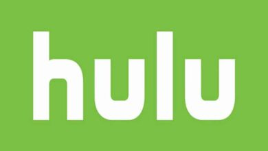 Photo of Hulu users can now download on Android devices