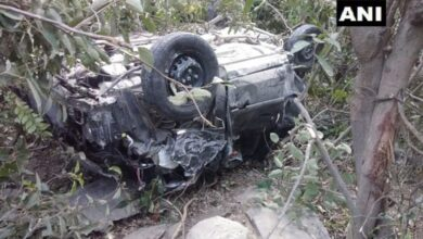 Photo of Himachal: Three killed after car plunges off cliff
