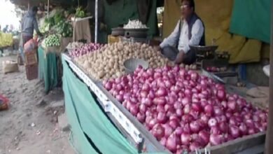 Photo of Onion prices shoot up in Nagpur, Bhopal