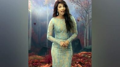 Photo of Here's Priyanka Chopra's first clip from 'Frozen 2'