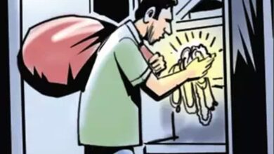 Photo of Thief in the guise of devotee steals ornaments from temple