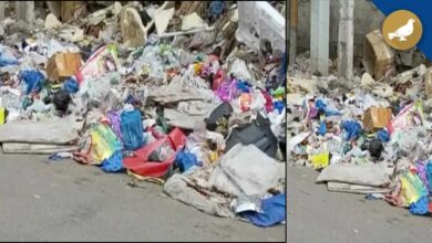 Photo of Heaps of garbage spreads stink breeds mosquitoes in Talab Katta