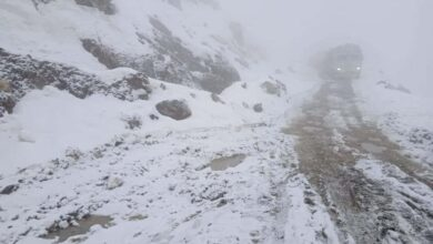 Photo of J-K: Tourists throng Panchari to enjoy fresh snowfall