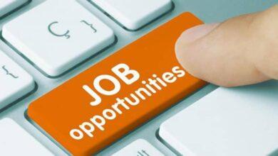 Photo of Bank of Maharashtra invites applications for 300 vacancies