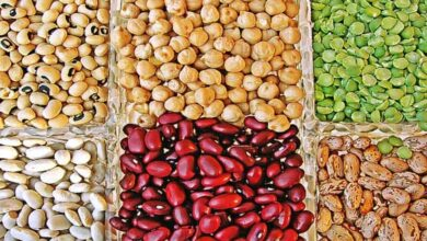 Photo of Legumes-rich diet lowers cardiovascular disease risk