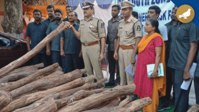 Photo of Red Sandalwood smuggler held by South Zone Task Force