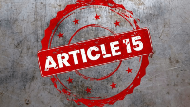 Photo of What is Article 15?