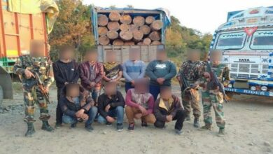 Photo of Assam Rifles seize 9 trucks loaded with pinewood