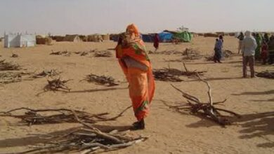 Photo of Sudan initiates investigation into Darfur crimes