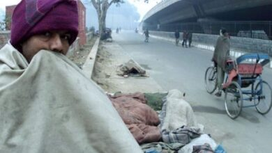 Photo of Cold wave continues in North India