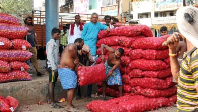 Photo of Egyptian onion arrive in Hyderabad