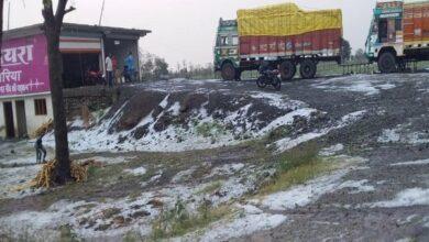 Photo of MP: Heavy rain, hailstorm damages crops in Dewas