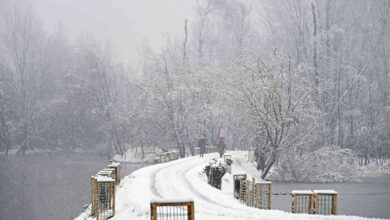 Photo of J&K to celebrate Accession Day as holiday
