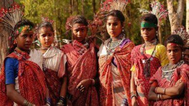 Photo of National Tribal Dance Festival to be held in Raipur