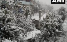 North India becomes winter wonderland with snowfall