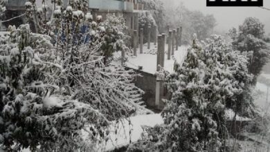 Photo of North India becomes winter wonderland with snowfall