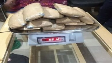 Photo of HP: 2 Nepali drug peddlers arrested, 15 kg of cannabis seized