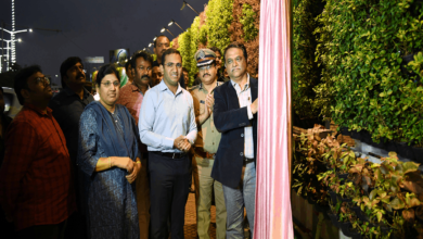Photo of Khairatabad flyover Green walls greet commuters in city