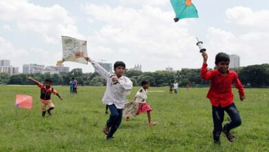 Photo of Rajasthan govt bans sale of Chinese manjha