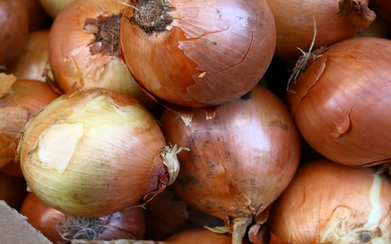 Newly married couple gets 'onions' as wedding gift