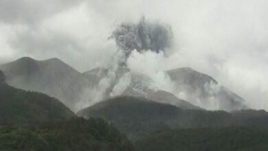 Photo of New Zealand: White Island volcano erupts