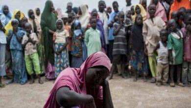 Photo of Several killed in fighting between Nigeria jihadist factions