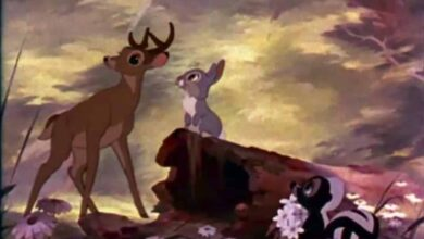 Photo of Disney to remake 'Bambi' as live-action film