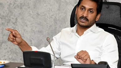 Council conundrum for Jagan?