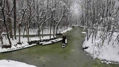 Photo of Cold weather conditions continue in Kashmir