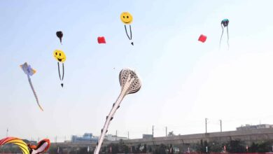 More than 12 lakh visit Kite fest at Secunderabad