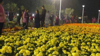 Photo of Flower, ornamental foliage plant exhibition held in Agartala