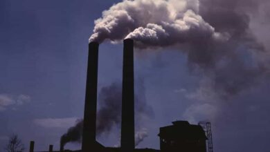 Photo of Air pollution linked to changes in brain structure in kids