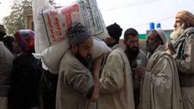 Photo of Wheat flour price hikes up to PKR 75 per kg in Pakistan: Report