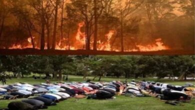 Photo of Bushfire: Rain brings relief after offering of Namaz-e-Istisqa