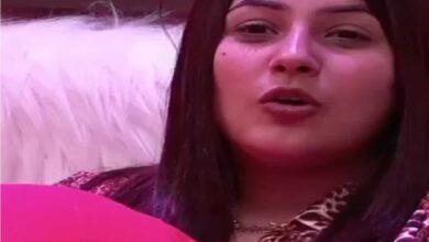 Photo of Bigg Boss 13: Shehnaaz isn't fake, says her brother Shehbaz