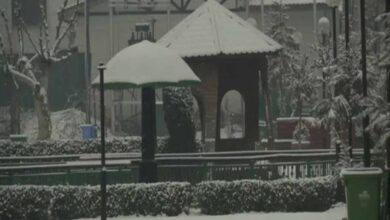 Photo of Srinagar receives fresh snowfall