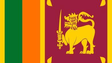 Photo of SL Cricket grants LKR 25 mn to government to fight coronavirus