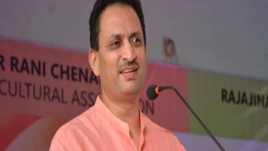 Photo of Gandhi's freedom struggle was big drama, says BJP MP Anantkumar