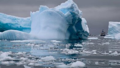 Photo of Antarctic ice: Record temperature sparks fresh concern