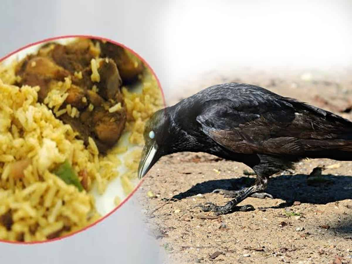 Image result for tamilnadu temple crows died